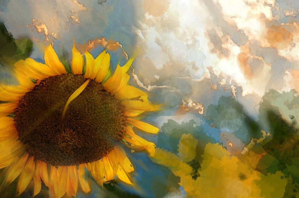 Sunflower paint-1